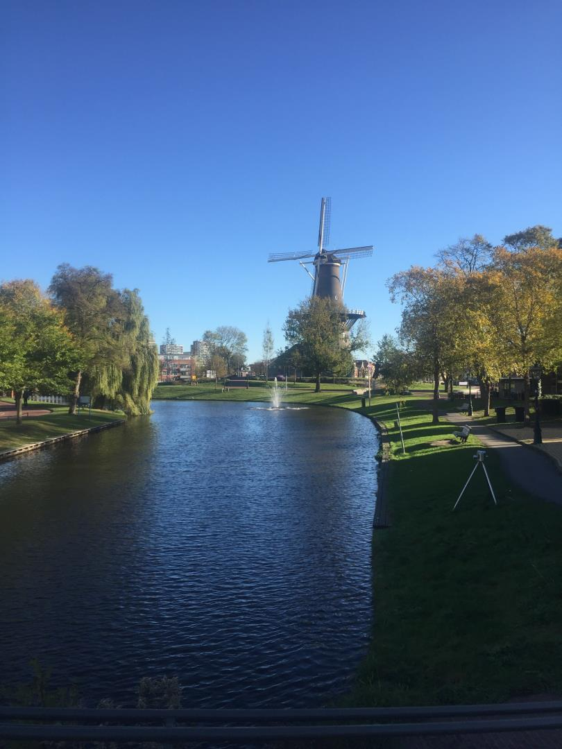 Windmills in Netherlands while on Snelgrove Travel River Cruise.