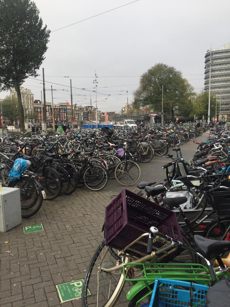 Bikes in Netherlands as seen by Snelgrove Travel when visiting